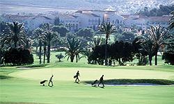 mazzaron golfsport